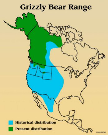 Grizzly Bear History Western Wildlife Outreach - The great plains on us map