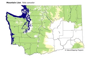 WA_mountain_lion_nm
