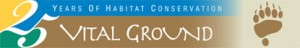 vg_anniversary_logo
